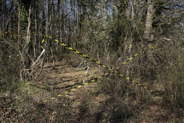 I segni sugli alberi indicano una linea di ricerca di idrocarburi all'interno della zona di produzione del vino DOP Zitsa, nell'Epiro.