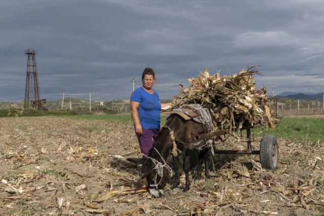 Floresha, 48 anni, nel suo campo in periferia di Kuçove (Albania), dove convivono pozzi di petrolio e agricoltura.