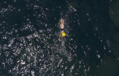 Swimmer natalonga 2021